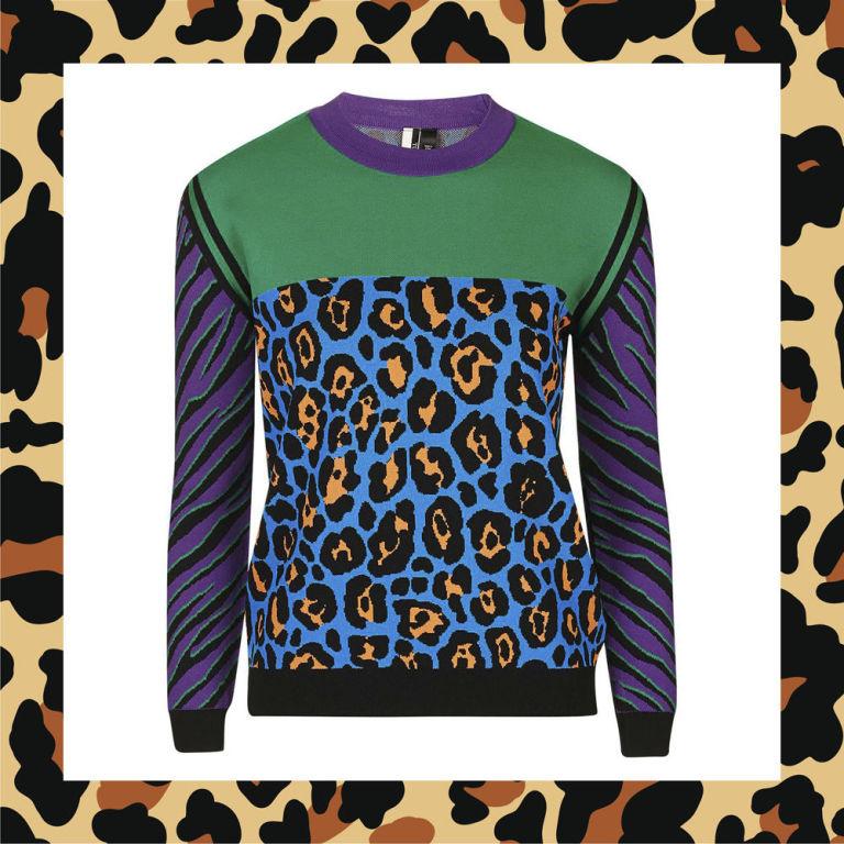 animal print color block jumper 95 topshopcom - Animal Pictures Print Color
