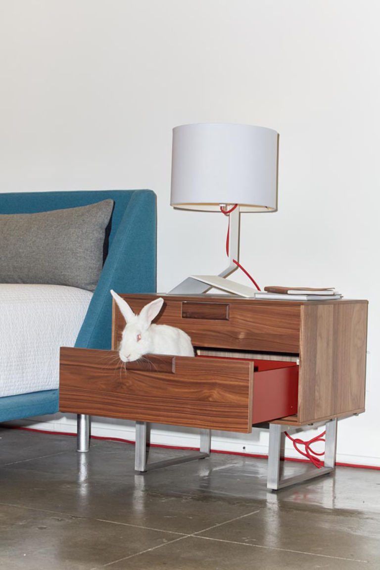 adoptable animals pose on blu dot furniture - tracey stewart hasn't quite figured out if she'd rather sleep on the nookbed or just in the series  nightstand—the bender table lamp playfullyechoes the